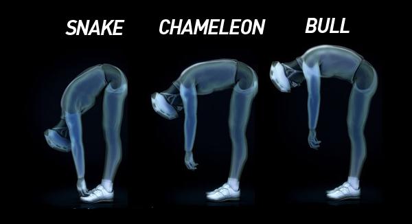 Les postures du Spin Concept Fizik